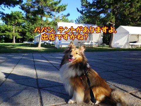 20120826_1_2.jpg