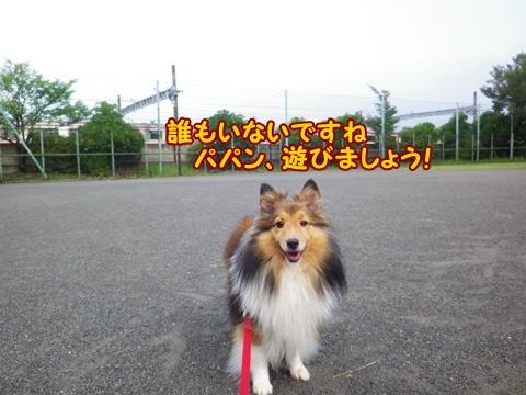 20120907_7.jpg
