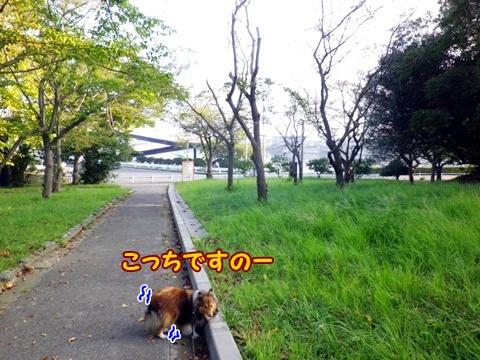 20120908_1_4.jpg