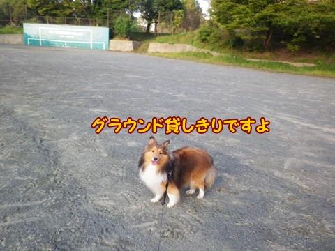 20120908_1_6.jpg