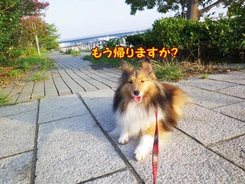20120908_8.jpg