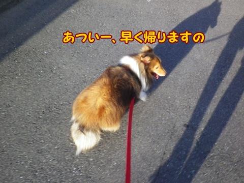 20120909_8.jpg