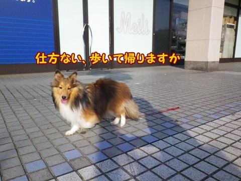 20120913_8.jpg
