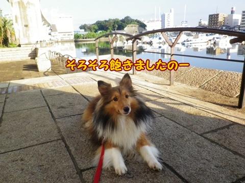 20120914_11.jpg
