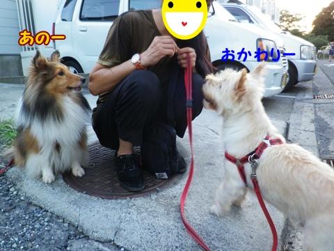 20120914_2.jpg