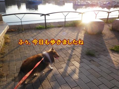 20120914_4.jpg