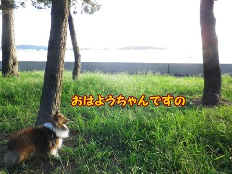 20120915_1.jpg