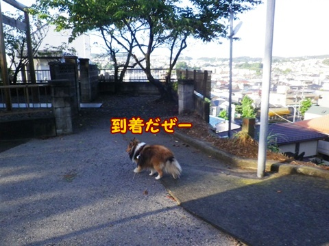 20120917_4.jpg