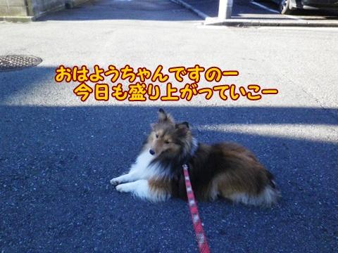 20120929_2.jpg