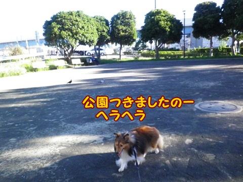 20120929_8.jpg