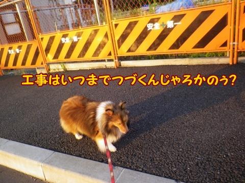 20120930_3.jpg