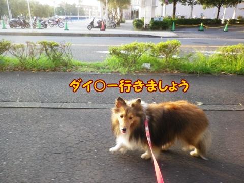 20120930_6.jpg