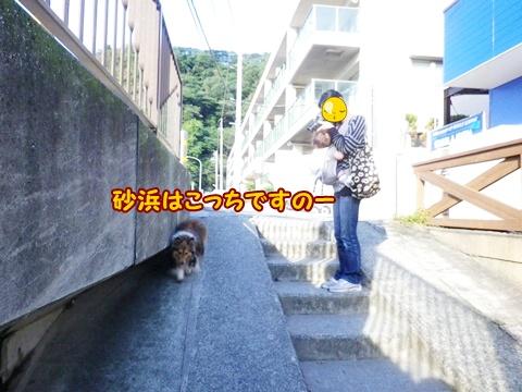 20121008_6.jpg