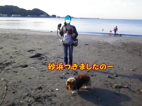 20121008_7.jpg