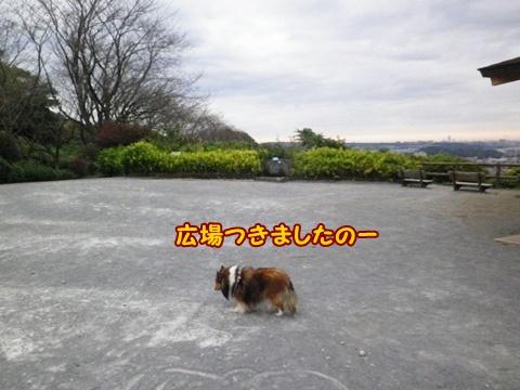 20121103_1_1.jpg