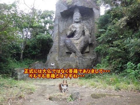 20121103_1_10.jpg