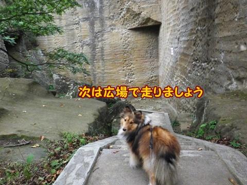 20121103_1_12.jpg