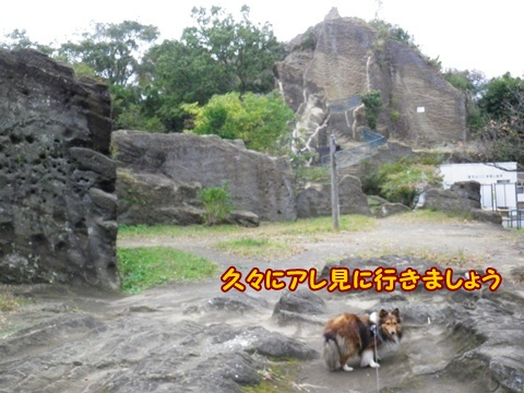20121103_1_5.jpg
