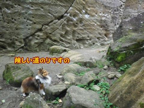 20121103_1_6.jpg