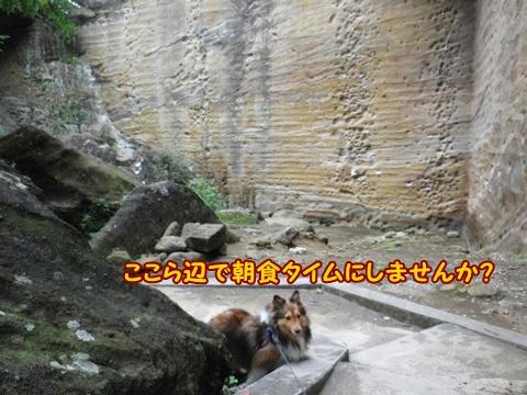 20121103_1_7.jpg