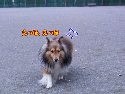 20121103_5.jpg