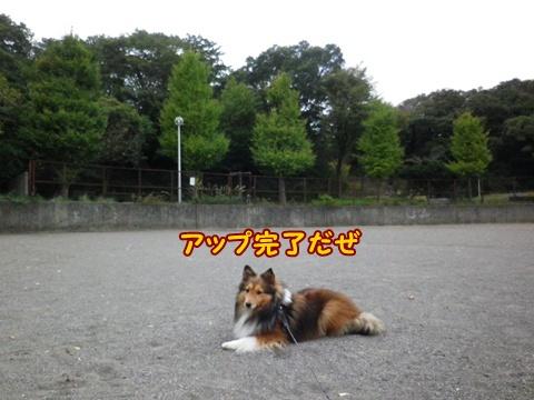 20121103_6.jpg