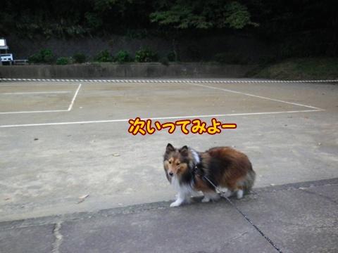 20121103_7.jpg