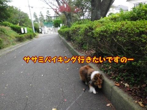 20121103_9.jpg