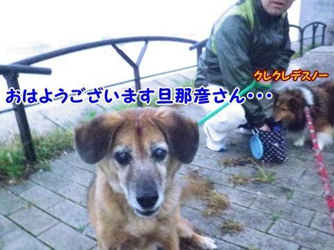 20121107_6.jpg
