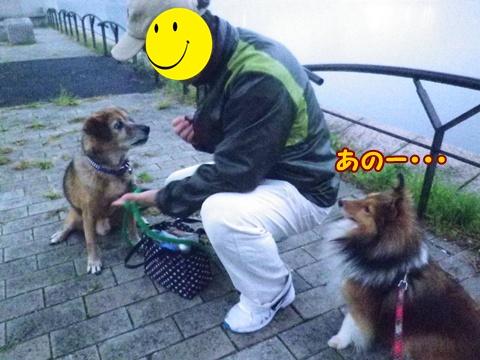 20121107_7.jpg