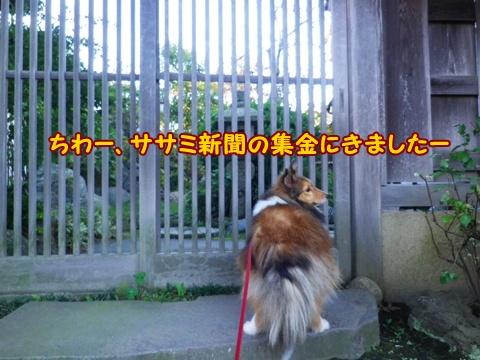 20121110_1.jpg