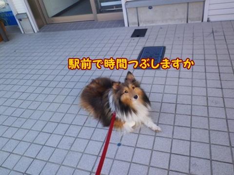 20121110_6.jpg