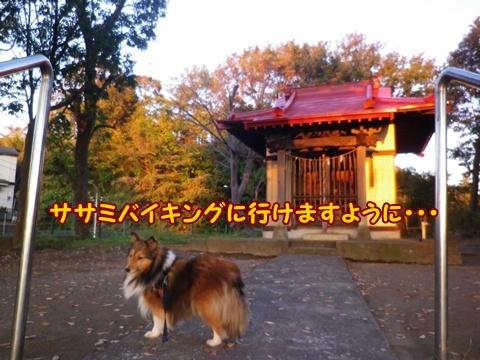 20121116_4.jpg