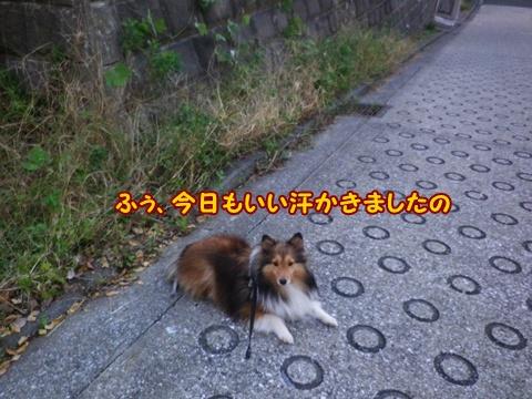 20121116_6.jpg