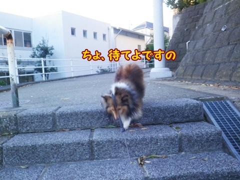20121116_8.jpg