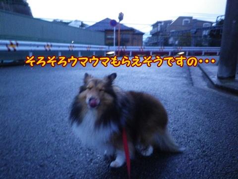 20121206_2.jpg