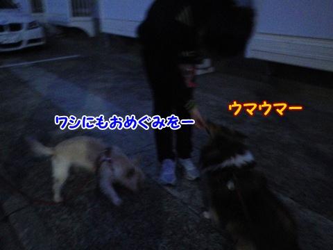 20121207_2.jpg