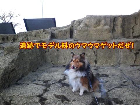 20121207_6.jpg