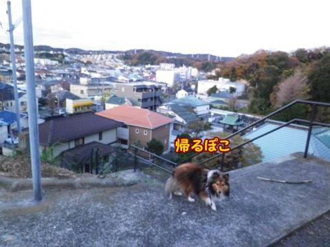 20121207_8.jpg