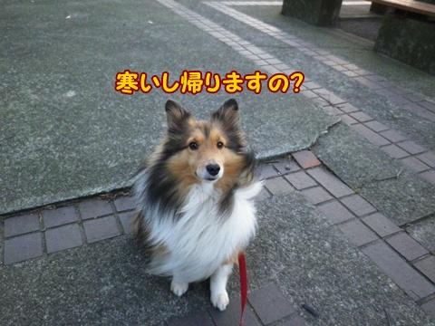 20121208_4.jpg