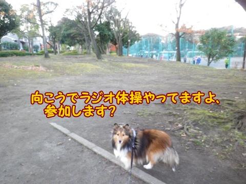 20121208_5.jpg