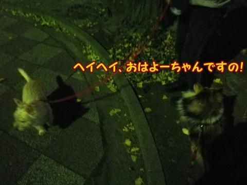 20121211_1.jpg