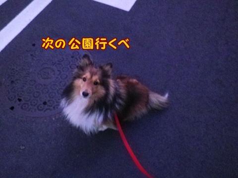20121211_6.jpg