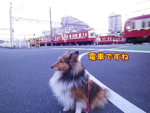 20121212_2.jpg