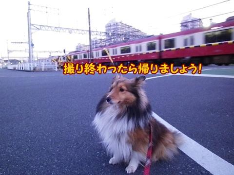 20121212_3.jpg
