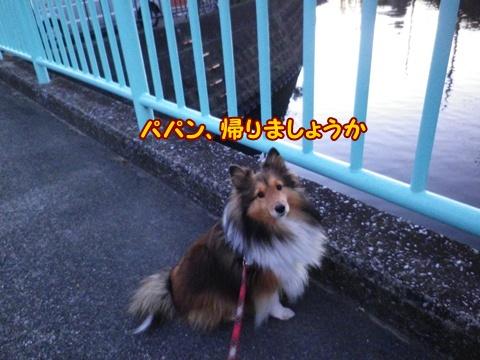 20121213_2.jpg