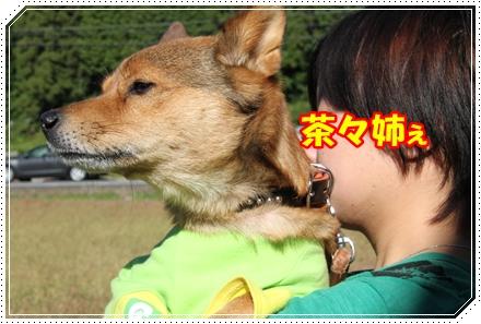 IMG_16381.jpg