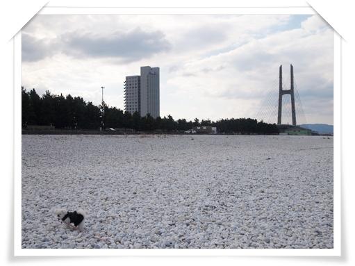 20111211忘年会A-4