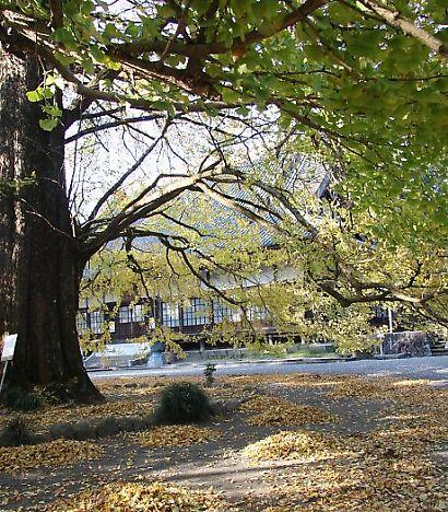 西山本門寺-4