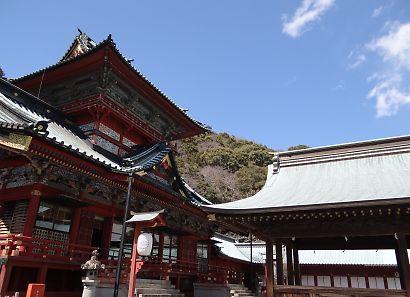 静岡浅間神社内の桜-1